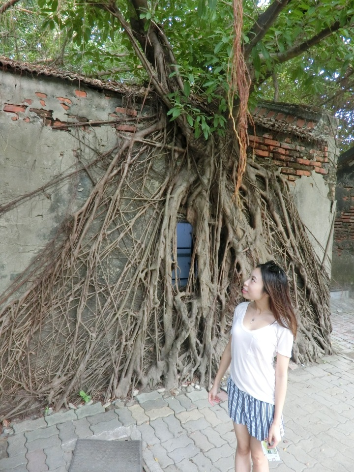 taiwan-travel-anping-tree-house-8