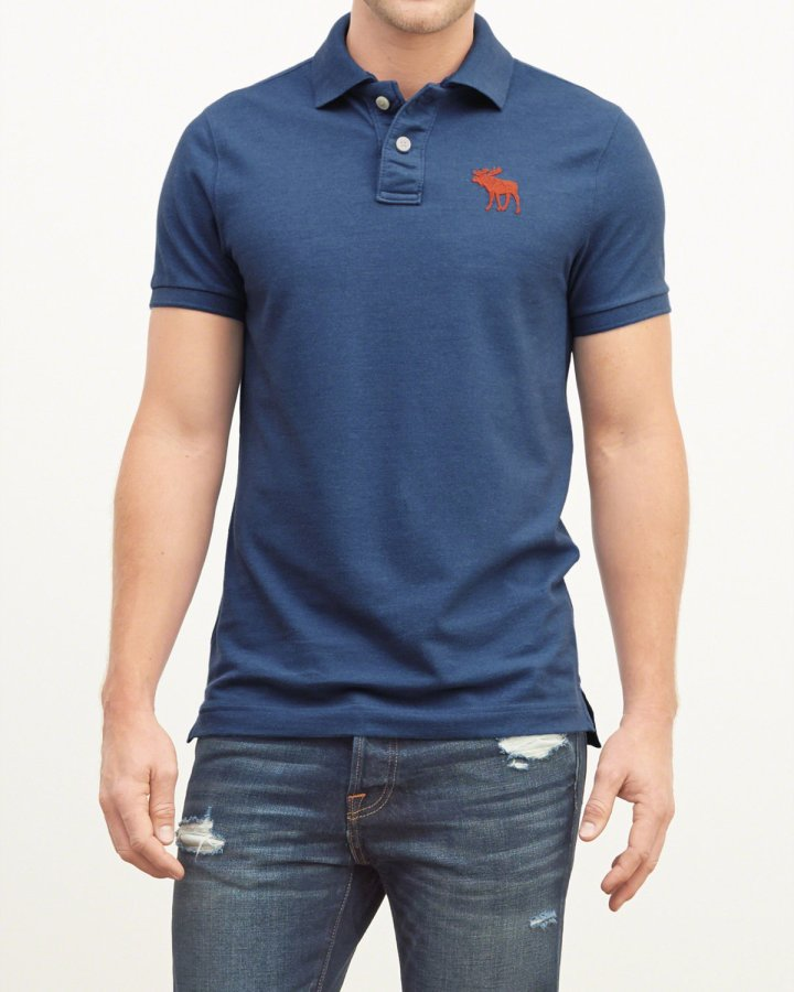 A&F Big Icon Polo Shirt